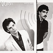 Voices de Daryl Hall & John Oates