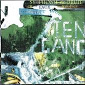 Symphonie De Bruit En Eaux Troubles by TenGang