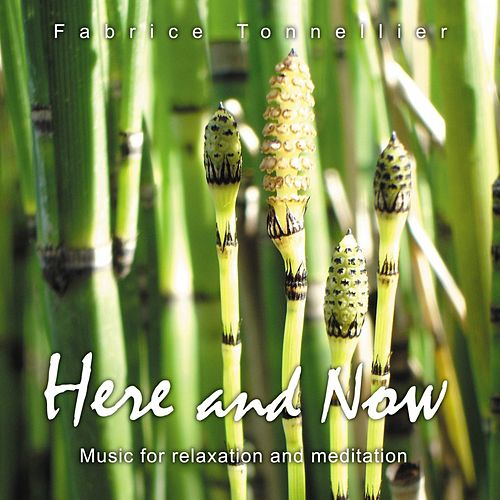 Here And Now (Music for relaxation, spa, massage and meditation) by Fabrice Tonnellier