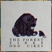 Odd Hikes by Forest Fires