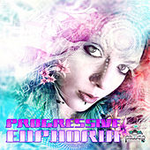 Progressive Euphoria v.1 by DJNV (Best of Trance, Progressive, Goa and Psytrance Hits) by Various Artists