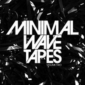 The Minimal Wave Tapes: Volume Two de Various Artists