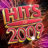 Hits Of 2009 de Various Artists