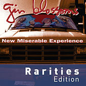 New Miserable Experience von Gin Blossoms