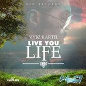 Live You Life - Single by VYBZ Kartel