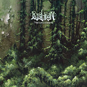Forestelevision by Lesbian