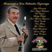 Homenaje A Don Salvador Lizarraga de Various Artists