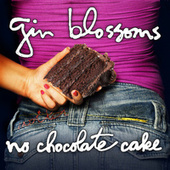 Lost And Found by Gin Blossoms