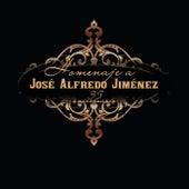 Homenaje A José Alfredo Jiménez de Various Artists