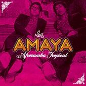 Afrorumba Tropical de Los Amaya
