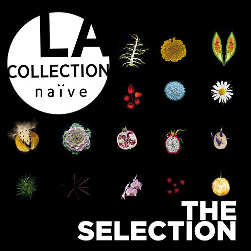 La collection naïve : The Selection by Various Artists