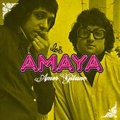 Amor Gitano de Los Amaya