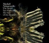 The World Has Made Me The Man Of My Dreams de Meshell Ndegeocello