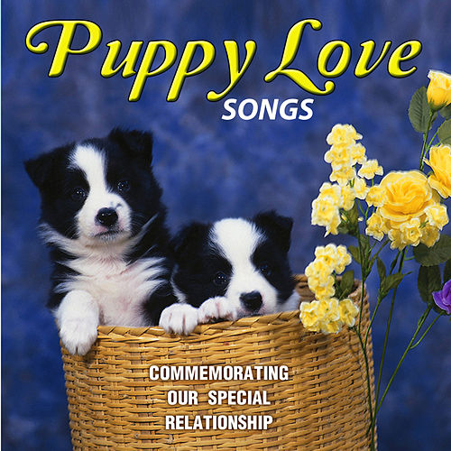 Puppy Love Songs (Commemorating Our Special Relationship) by David & The High Spirit