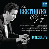 A Beethoven Odyssey, Vol. 1 de James Brawn