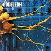 Selfless by Godflesh