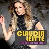 Pássaros/Remix Baixahits de Claudia Leitte