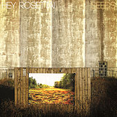 Seeds by Hey Rosetta!