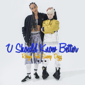 U Should Know Better by Robyn