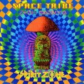 Sonic Mandala by Space Tribe