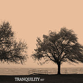 Tranquility 007 by Various Artists