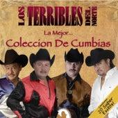 La Mejor Coleccion De Cumbias by Los Terribles Del Norte