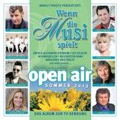Wenn die Musi spielt - Sommer Open Air 2013 von Various Artists