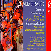 Strauss: Complete Chamber Music - 9 Piano Trios, Clarinet, Cello, Horn by Various Artists