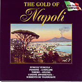 The Gold Of Napoli Vol 7 di Various Artists