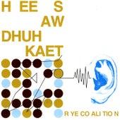 Hee Saw Dhuh Kaet by Rye Coalition