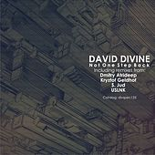 Not One Step Back by David Divine