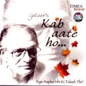 Kab Aate Ho… Kya Aapko Inhi Ki Talash Thi? von Gulzar