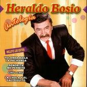 Antologia by Heraldo Bosio