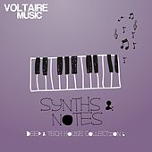 Synths and Notes, Vol. 6 by Various Artists
