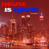 House Is House Volume 1 von Various Artists