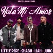 Hola Mi Amor (Remix) by Various Artists