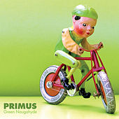 Green Naugahyde by Primus