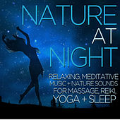 Nature at Night - Relaxing, Meditative Music and Nature Sounds for Massage, Reiki, Yoga, And Sleep by Nature Tribe
