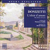 Opera Explained: DONIZETTI - L'elisir d'amore (Smillie) by David Timson