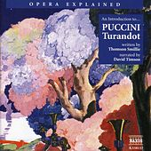 Opera Explained: Puccini - Turandot (Smillie) by David Timson