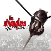 Feel It Live de The Stranglers
