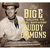 The Big E: A Salute to Steel Guitarist Buddy Emmons von Various Artists