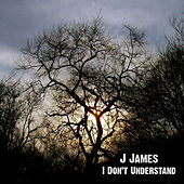 I Don't Understand by J. James