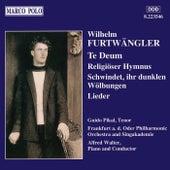FURTWANGLER: Lieder / Te Deum / Religioser Hymnus by Various Artists