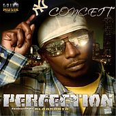 Perfection by Conceit