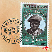 American Blues Legend by Sonny Terry