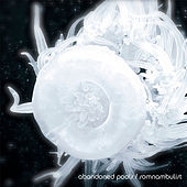 Somnambulist by Abandoned Pools