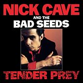 Tender Prey (Remastered) de Nick Cave