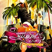 Fizwright Essential Summer Bangers (Reloaded) by Various Artists