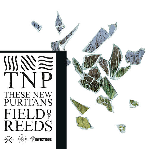 Field of Reeds by These New Puritans